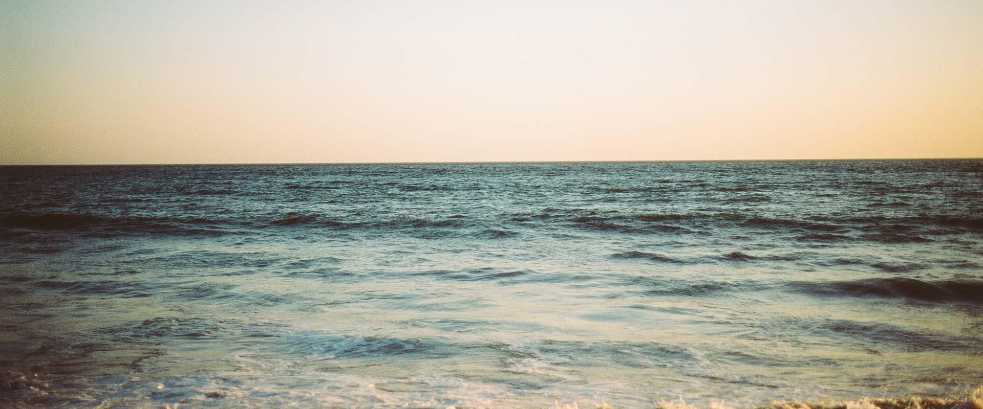 Pure Optimists Mindfulness